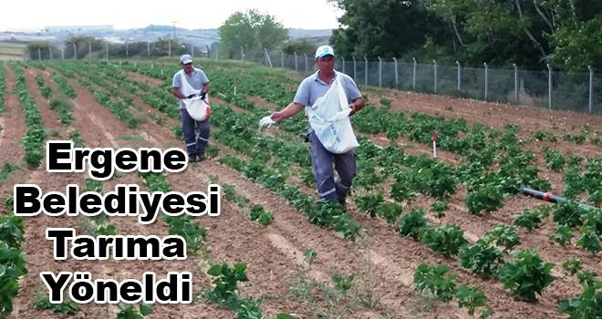 Lavantadan Sonra Fasulye