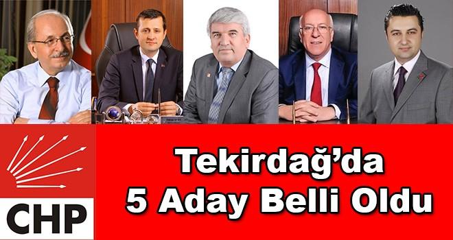 CHP Tekirdağ'da Kadir Albayrak ile devam
