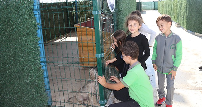 Öğrenciler Ergene Belediyesi Barınağını Ziyaret Etti