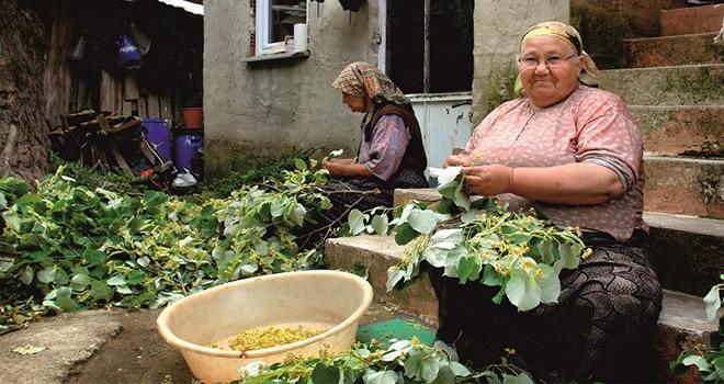 Tekirdağ Büyükşehir Belediyesi'nden Kadın Çiftçiler Günü Etkinliği