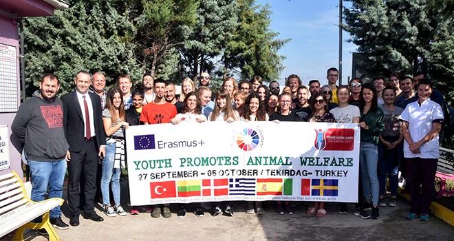 Avrupalı Gençler Hayvan Hakları İçin Çorlu'da Buluştu