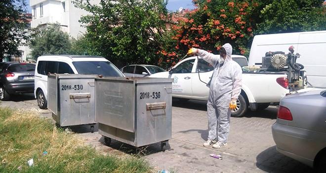 Karasineğe Karşı Çöp Konteynerleri İlaçlanıyor